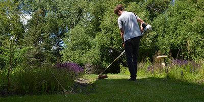 Soil and Nutrient Management for lawn installation